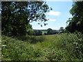 TQ4062 : View from a footpath near Layham's Farm by Marathon