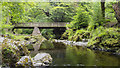 J3432 : Bridge, Tollymore by Rossographer