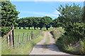 SO1802 : Track to Pentrapeod by M J Roscoe