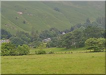 NY3915 : Field west of Goldrill Beck by Nigel Brown