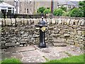 NY4887 : Lion's head drinking fountain by Rose and Trev Clough