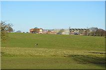 TA0139 : Beverley Racecourse by N Chadwick