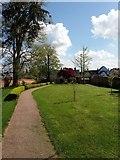 ST0107 : Cullompton: Walronds walled garden by Martin Bodman