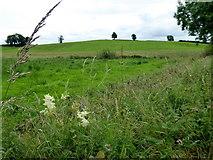H6056 : Ballynasaggart Townland. by Kenneth  Allen