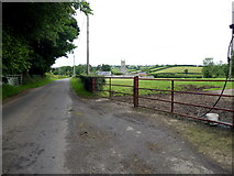 H6056 : Feddan Road, Ballynasaggart by Kenneth  Allen