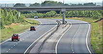 J3194 : The Larne Road, Lismenary, Ballynure - July 2017(2) by Albert Bridge
