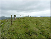 SH9219 : Moel Llygoed summit by Richard Law
