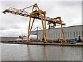 SE7423 : Travelling Crane near the Steel Terminal at Goole Docks by David Dixon