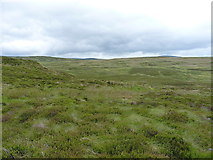 SH9420 : Moorland in the upper valley of the Hirddu Fach by Richard Law