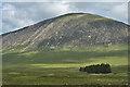 NN2554 : View towards Beinn a' Chrùlaiste by Nigel Brown