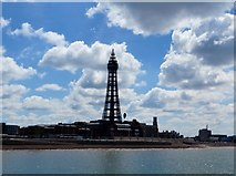SD3036 : Blackpool Tower from North Pier by Philip Platt