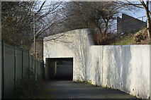 SX5058 : Underpass, Estover by N Chadwick