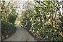 SX0780 : Lane near Tregreenwell by Derek Harper