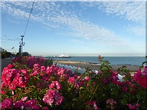TV6198 : Eastbourne Pier from the promenade by Marathon