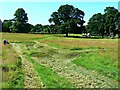 SH9974 : Trench system remains, Bodelwyddan Castle and Park (1) by Brian Robert Marshall