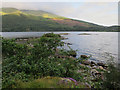 NN0233 : Sgeir Lag Choan, Loch Etive by Hugh Venables