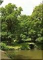 SX8778 : Lake inlet, Ugbrooke Park by Derek Harper