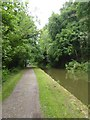 ST7960 : Canal towpath by Murhill by David Smith