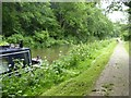 ST7862 : Mowing the long grass, Kennet and Avon Canal by David Smith