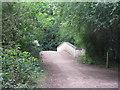 TL2171 : Bridge over Alconbury Brook by M J Richardson