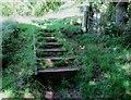 NO1801 : Steps on path to Bishop Hill, Lomond Hills by Bill Kasman