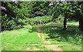 NO1802 : Junction of paths near Bishop Hill, Lomond Hills by Bill Kasman