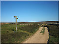 NY9550 : Track junction, Bulbeck Common by Karl and Ali