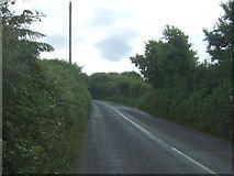 SW6923 : A3083 towards Lizard by JThomas