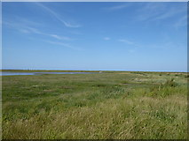 TG0345 : The Cley Channel and marshes by Chris Holifield