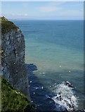 TA1974 : Bempton Cliffs by James T M Towill
