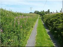 SE0028 : Wadsworth FP58 on Old Laithe Lane, Chiserley by Humphrey Bolton