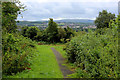 SD6929 : Open Ground off Clarendon Road, Blackburn by Chris Heaton
