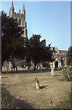 TQ8833 : Tenterden church by Philip Halling