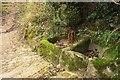 SX7582 : Granite basins, Foxworthy by Derek Harper