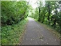 ST6966 : Bristol and Bath cycle path passing Tennant's Wood by David Smith