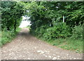 SO8607 : Footpath on the Laurie Lee walk by Humphrey Bolton