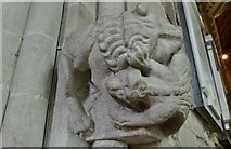 SO7137 : Ledbury, St. Michael and All Angels Church: Probably c14th carving of a lion fighting a winged dragon 3 by Michael Garlick