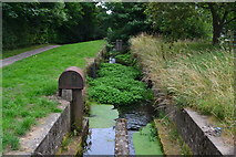 ST2896 : Monmouthshire and Brecon Canal: Five Locks by David Martin