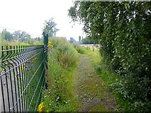NZ1465 : Path diversion on the Keelman's Way by Oliver Dixon
