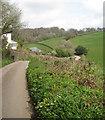 SX8151 : The lane to Oldstone Cross from Blackawton crosses a stream valley by Robin Stott