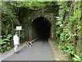 X3397 : Ballyvoyle Tunnel entrance by Jonathan Thacker