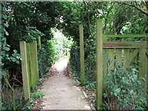 TM4599 : Public footpath to St Olaves by Evelyn Simak