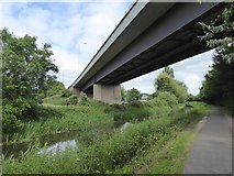 ST2325 : Under the A358 by the Bridgwater and Taunton Canal by David Smith