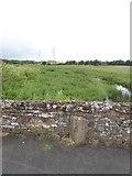 SX9791 : Heavitree boundary marker on Clyst St Mary bridge by David Smith