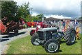 SO0452 : Vintage tractors, Royal Welsh Show by Robin Drayton