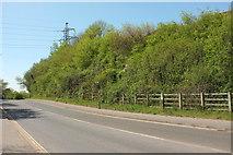 SX9066 : Browns Bridge Road, Torquay by Derek Harper