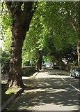 SX9265 : Devons Road, Babbacombe by Derek Harper