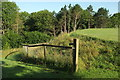 SX8965 : Path by the helipad, Torbay Hospital by Derek Harper