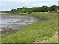 NU1434 : Shoreline near Waren Mill by M J Richardson