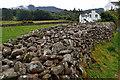 NY1700 : Stone Wall, Boot by Mick Garratt